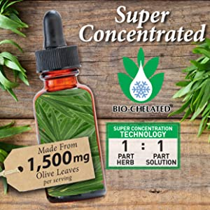 Olive leaf liquid extract, bio chelated, concentrated, nature's answer, alcohol free, gluten free