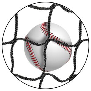 softball net