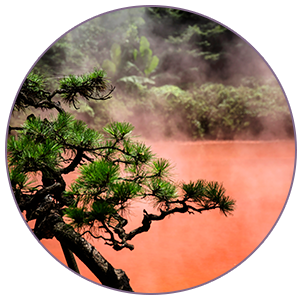 Red Volcanic Clay helps fight the signs of aging