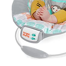 music and vibrations soothe baby