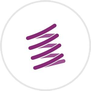 Elasticity Icon