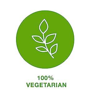100% Vegetarian*