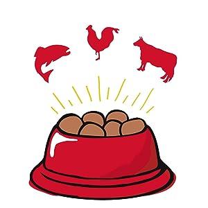 grain free dog food, natural dog food, holistic dog food, limited ingredient