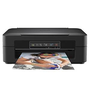 GLEGLE 29XL Compatible Tinta Cartuchos 15 Reemplazo para Epson ...
