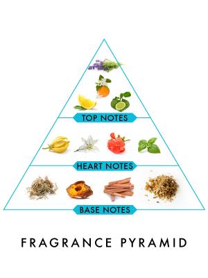 Wild Stone Hydra Energy Deodorant Spray