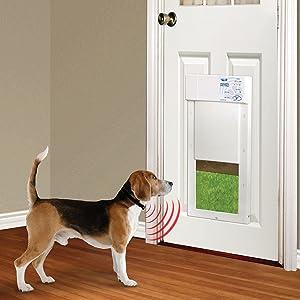 Amazon Com High Tech Pet Power Pet Medium Electronic Pet