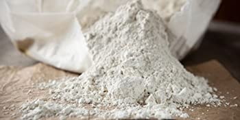 bag of food grade diatomaceous earth for humans pets children safe for the family