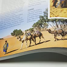 tuareg, sahara, camels, world culture, social studies, homeschooling