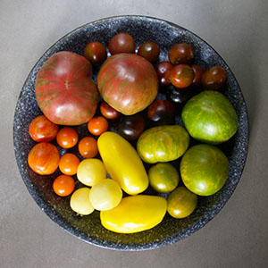Tomatoes, Potatoes, Peppers, and other nightshades