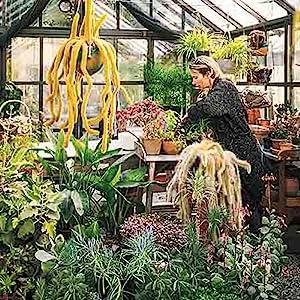 gardening plant care plants kinfolk