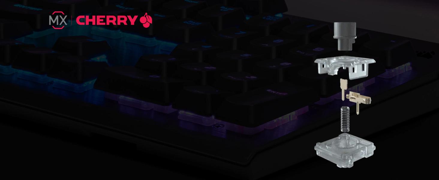 K60 RGB PRO SE Mechanical Gaming Keyboard — CHERRY VIOLA — Black