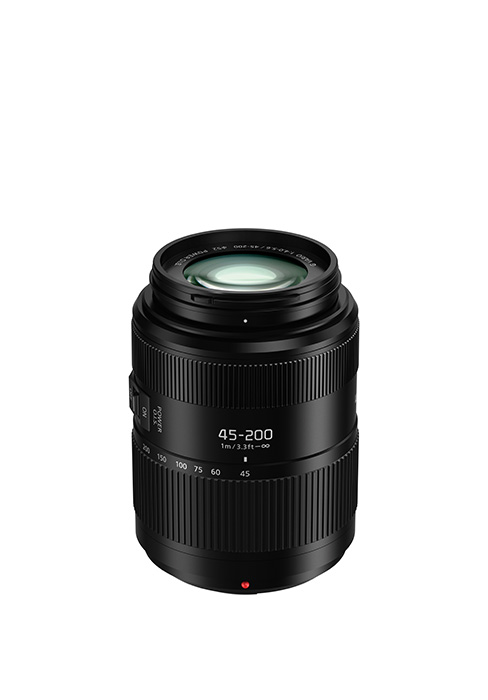 Lumix G H-FSA45200