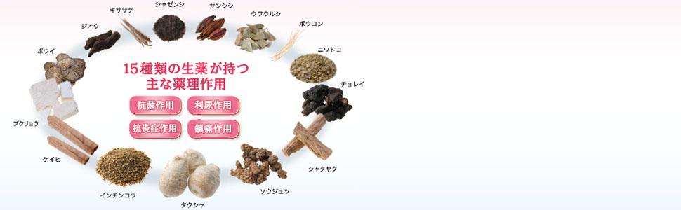 15種類の生薬が持つ主な薬理作用