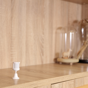 Bewegingsmelder, Aqara; Homekit, Smart Home