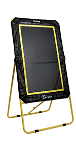 Champion Sports Deluxe Lacrosse Target: Ball Return Bounce Back Net Set