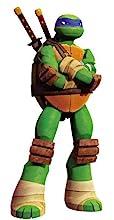 tmnt, teenage mutant ninja turtles, leonardo, nickelodeon
