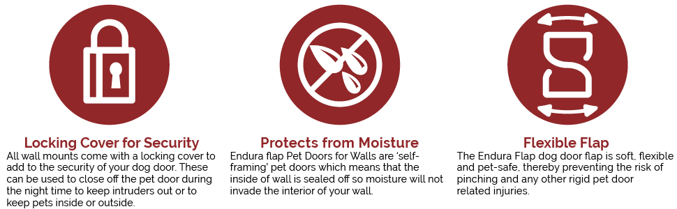 Amazon Endura Flap Double Flap Wall Mount Pet Door Extra