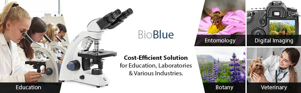 BioBlue Microscope