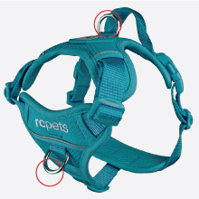 RC Pets Momentum Harness - leash points