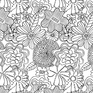 adult coloring books;coloring for adults;mindfulness coloring;zen