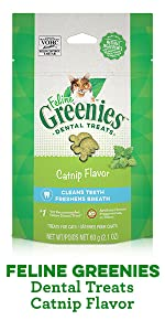 Feline Greenies Dental Treats Catnip Flavor, Catnip Cat Treats, Treating, Greenies for Cats, Cat Nip