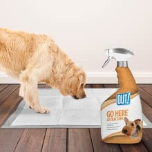 pee post, puppy potty training, dog training spray, go here spray for dogs, puppy training spray