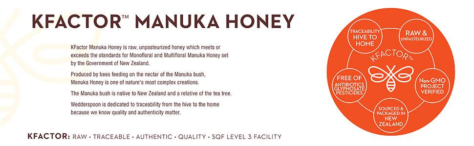 Wedderspoon Raw Monofloral Manuka Honey, On the Go, KFactor 16, 24 Packs, 240 g