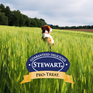 Stewart, Pro-Treat, Made in USA, dog treats, training, delicious, no fillers, natural