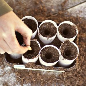 Grow Food For Free image 1