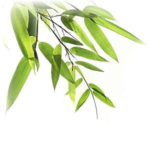 matelas bambou 60x120 60 120 bébé bebe enfant déhoussable dehoussable antiacarien naturel ferme bio