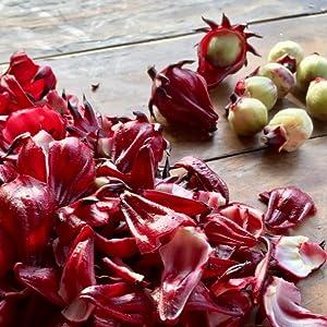 Hibiscus; Hibiscus tea; Hibiscus health benefits; Bissap; Karkade; Instant Hibisicus