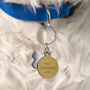 Dog with tags on collar that say pet dander