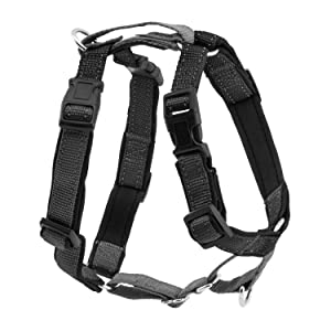 3 in 1 harness chest car safety reflective adjustable