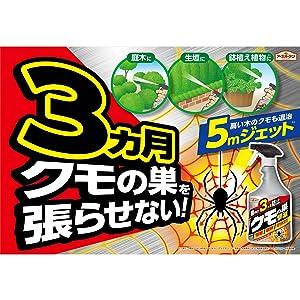 クモ クモの巣 殺虫剤 蜘蛛