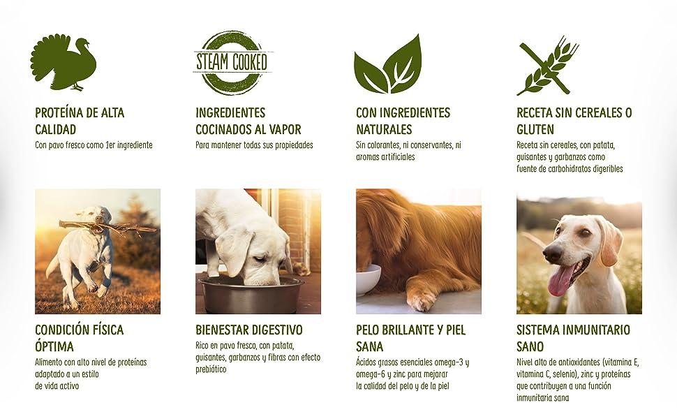 True Instinct No Grain - Natures Variety - Pienso sin Cereales para Perro Adult Medium-Maxi con Pavo - 2kg