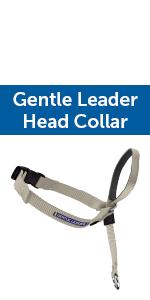 head collar no pull walking gentle dog