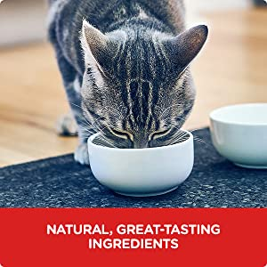 Natural great-tasting Ingredients Cutting-edge food science provides the taste