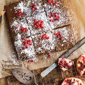 Tender Gingerbread Cake