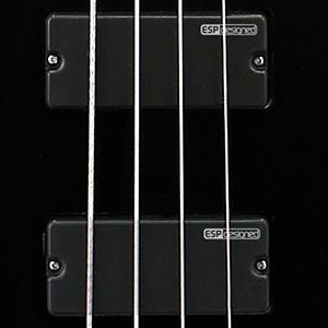 7cd95aa2 5e10 4141 b11e dab34ce77c17._SL300__ amazon com esp ltd standard f104 electric bass guitar, black ESP LTD Tom Araya at honlapkeszites.co