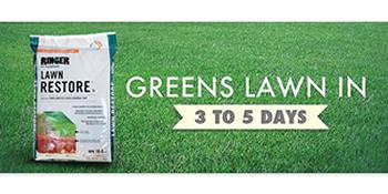 Organic Lawn Fertilizer - Organic Lawn Care - The Home Depot