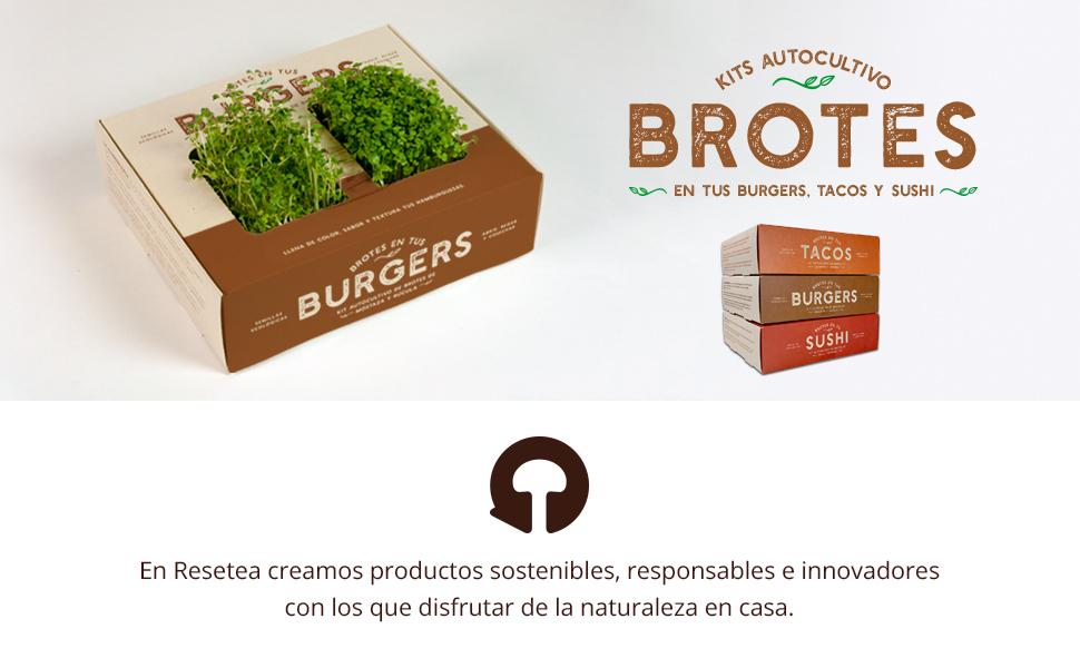 Brotes en tus tacos: Amazon.es: Jardín