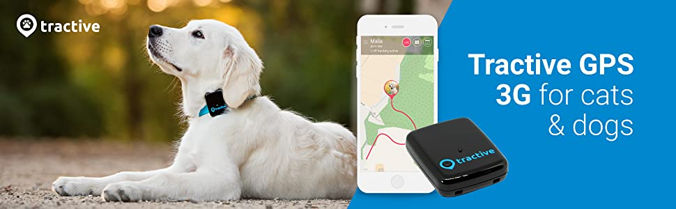 Dog Tracker, App, Smartphone