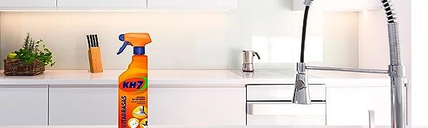 KH Profesional - Limpiador para baños - 5 l: Amazon.es ...
