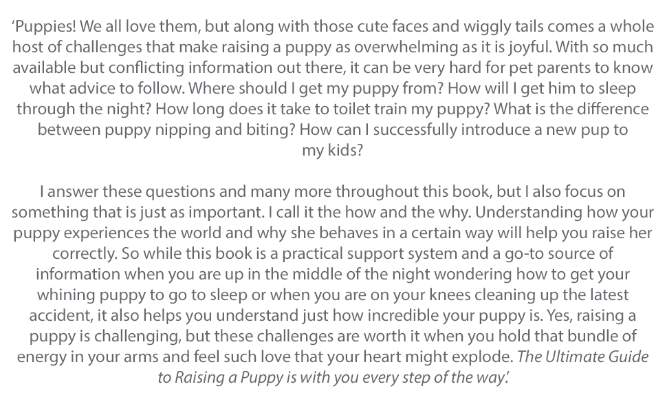 dog puppy training care pet guide how to channel 4 new dog-keeping it's me or train