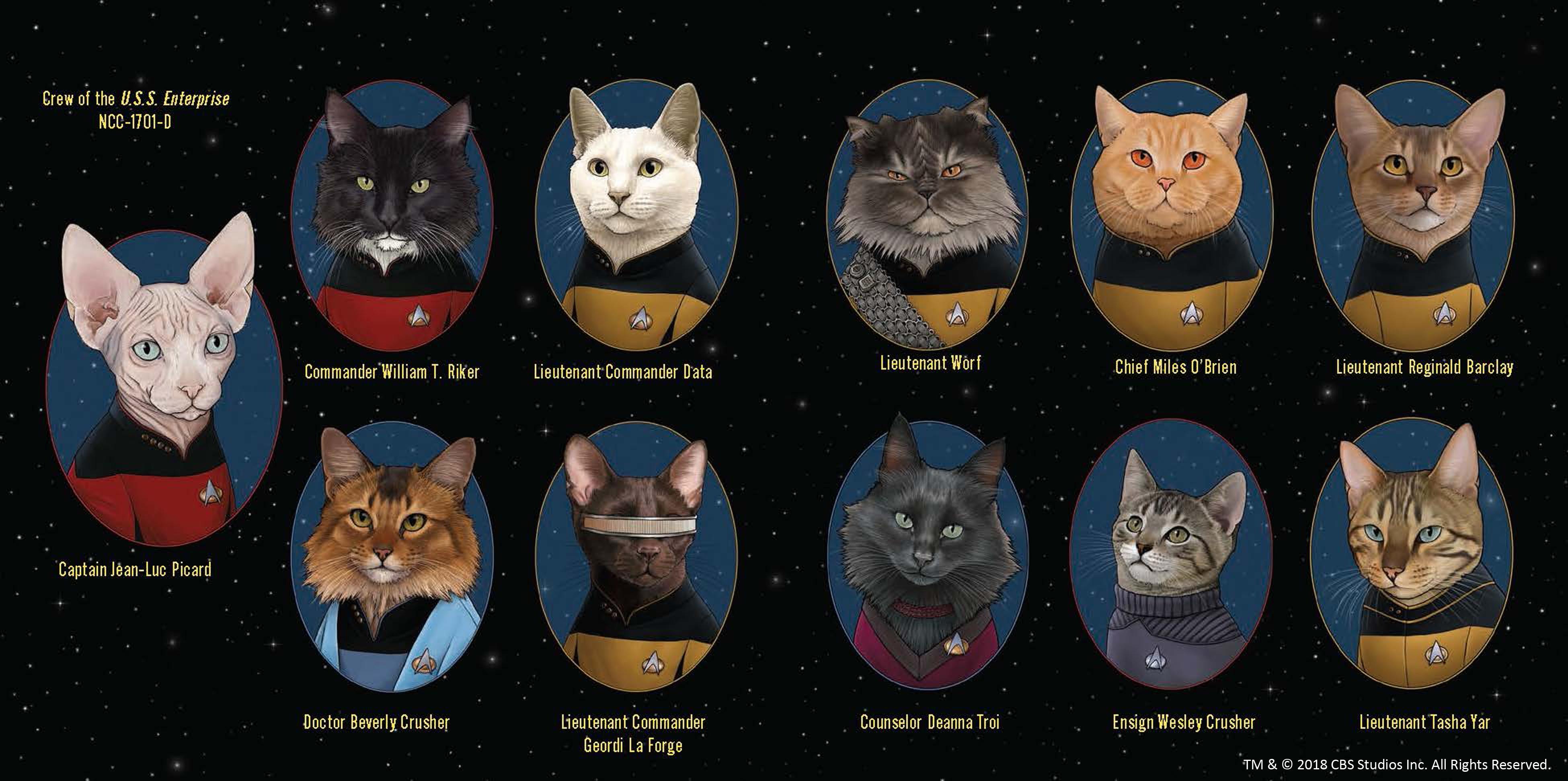 Amazon.com: Star Trek: The Next Generation Cats: (Star
