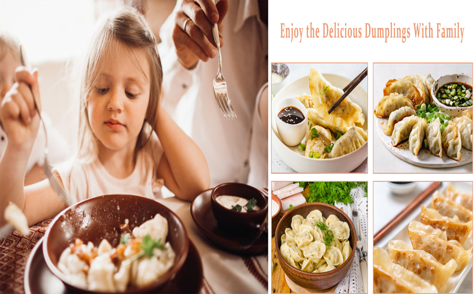 1 dumpling skin machine 2 dumpling molds and a stuffing spoon Chinese dumpling pie dumpling dumpling stuffing mold kitchen utensils SZFLWA 3 pieces of 9.5 cm stainless steel dumpling machine