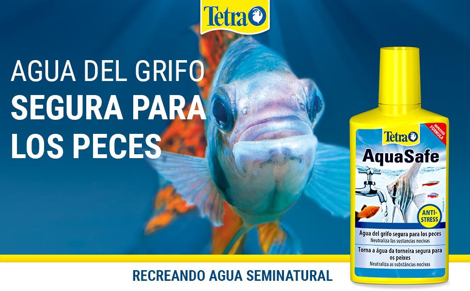 Header Tetra AquaSafe