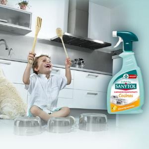 Sanytol - Limpiador desinfectante de cocinas, Spray 750ml: Amazon.es: Salud y cuidado personal