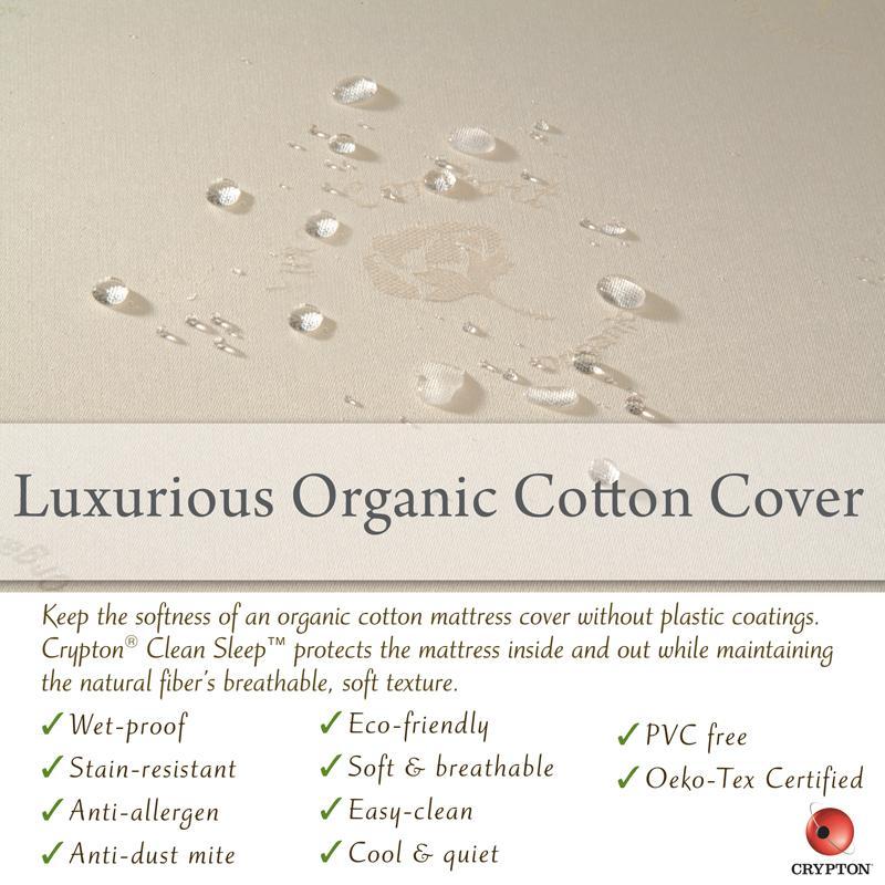 Amazon Com Sealy Soybean Serenity Foam Core Infant