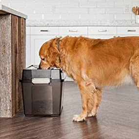 Dog Food Storage Container, Dog Bowl, Dog Bowl Stand, Raised Dog Bowls For